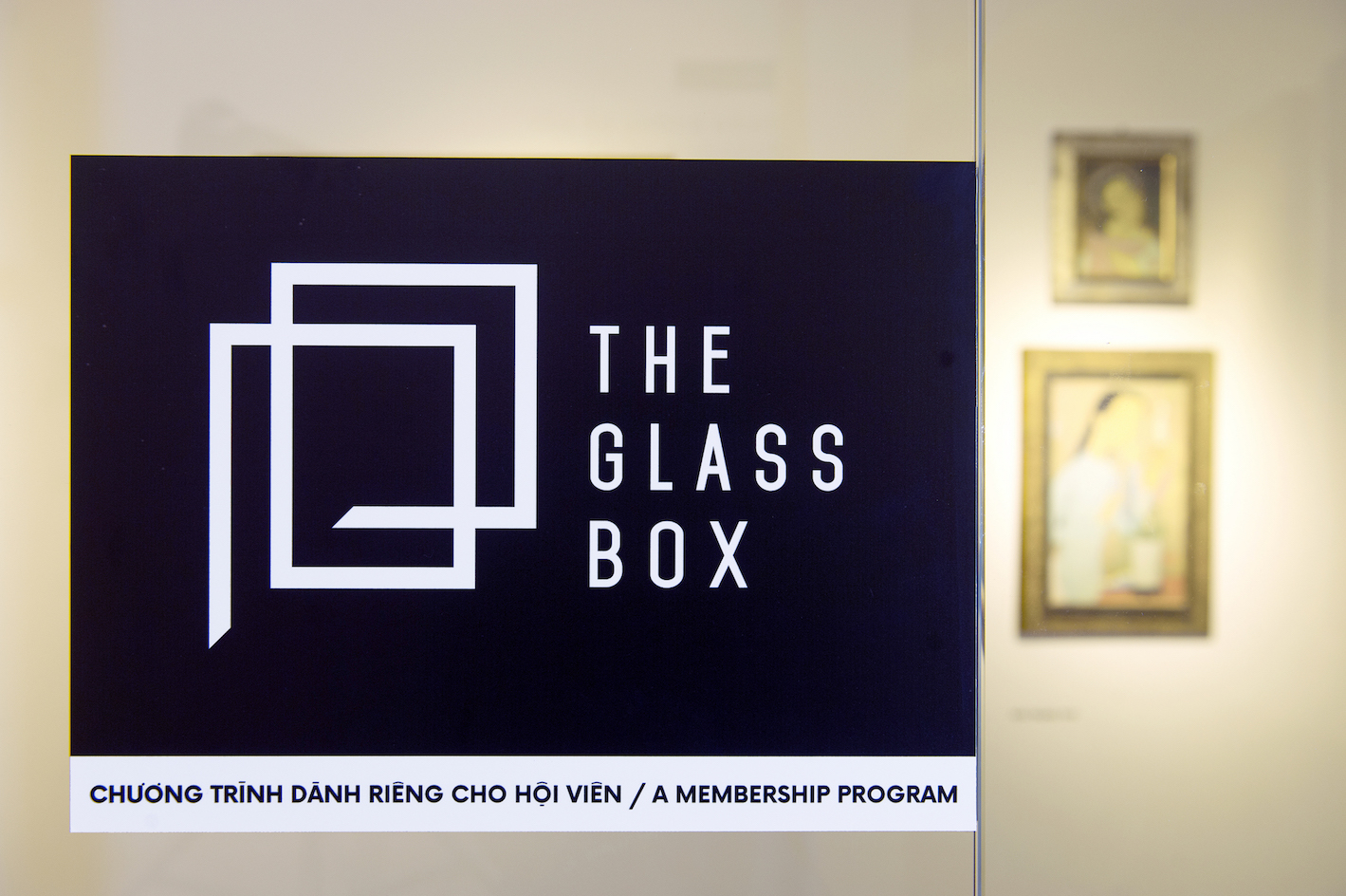 THE GLASS BOX: EDITION 1